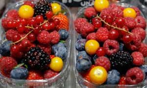 Черника — аллерген или нет: возможна ли реакция на ягоду у детей, перекрёстная аллергия