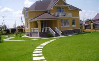 Самая неприхотливая газонная трава: газон, не требующий полива, для ленивых, простой для дачи, какой будет расти на